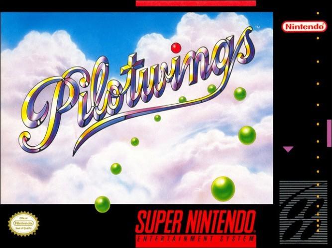 Pilot-wings
